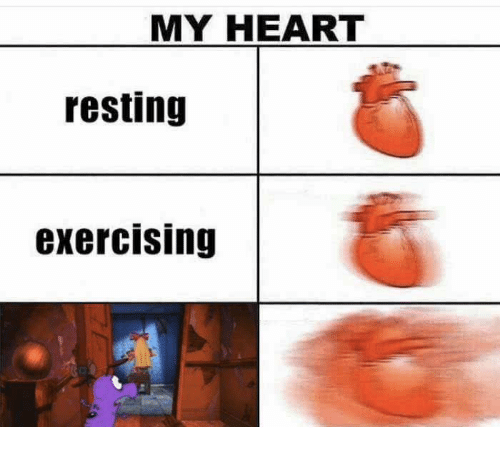 Heart, Exercising, and My Heart: MY HEART  resting  exercising