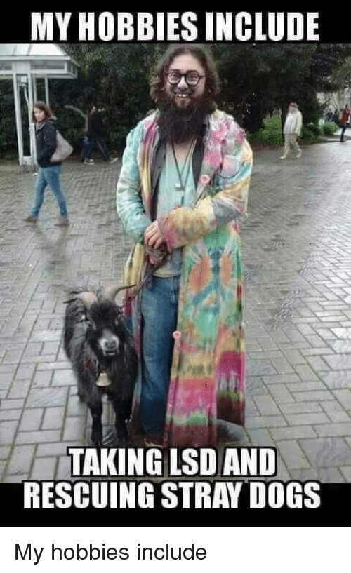 Funny Hippie Meme : My hobbies include taking lsd and rescuing stray dogs