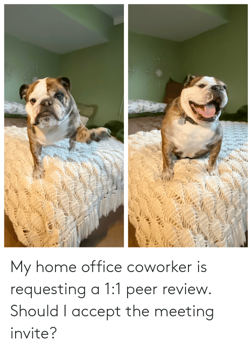 peer: My home office coworker is requesting a 1:1 peer review. Should I accept the meeting invite?