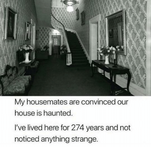 Lived: My housemates are convinced our  house is haunted.  I've lived here for 274 years and not  noticed anything strange.
