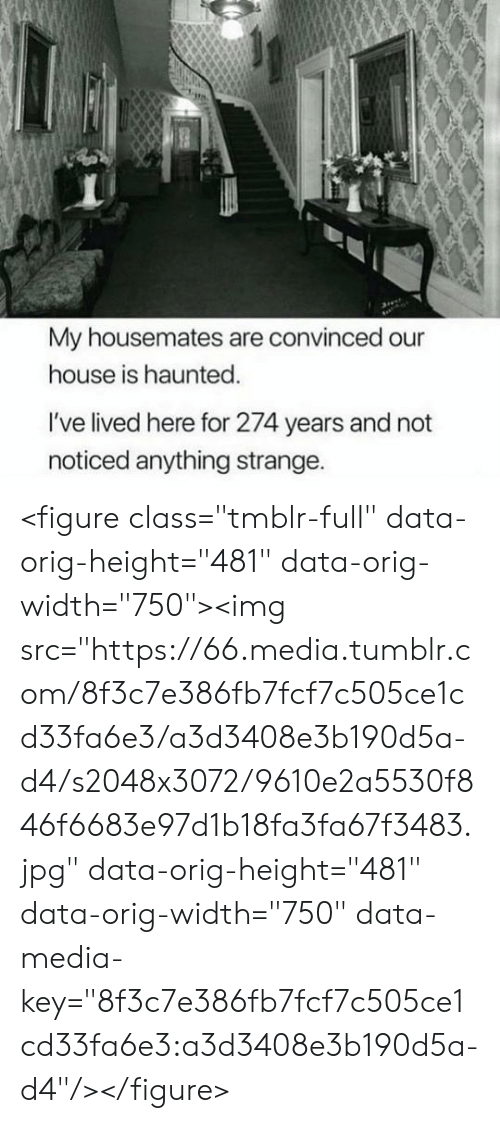 """Lived: My housemates are convinced our  house is haunted.  I've lived here for 274 years and not  noticed anything strange. <figure class=""""tmblr-full"""" data-orig-height=""""481"""" data-orig-width=""""750""""><img src=""""https://66.media.tumblr.com/8f3c7e386fb7fcf7c505ce1cd33fa6e3/a3d3408e3b190d5a-d4/s2048x3072/9610e2a5530f846f6683e97d1b18fa3fa67f3483.jpg"""" data-orig-height=""""481"""" data-orig-width=""""750"""" data-media-key=""""8f3c7e386fb7fcf7c505ce1cd33fa6e3:a3d3408e3b190d5a-d4""""/></figure>"""