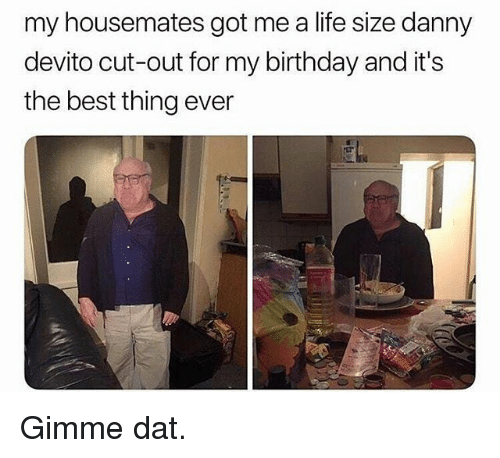 Birthday, Funny, and Life: my housemates got me a life size danny  devito cut-out for my birthday and it's  the best thing ever Gimme dat.