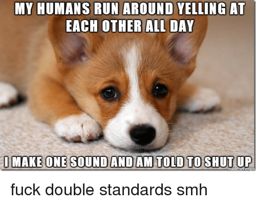 Running: MY HUMANS RUN AROUND YELLING AT  EACH OTHER ALL DAY  I MAKE ONE SOUND AND AM TOLD TO SHUT UP fuck double standards smh