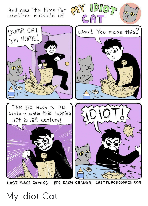 Idiot: My Idiot Cat