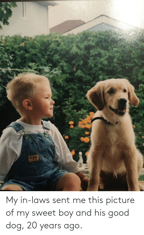 in laws: My in-laws sent me this picture of my sweet boy and his good dog, 20 years ago.