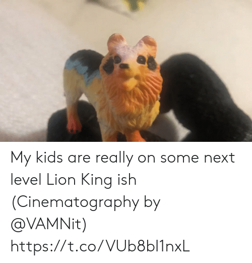 cinematography: My kids are really on some next level Lion King ish (Cinematography by @VAMNit) https://t.co/VUb8bI1nxL