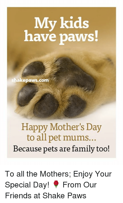 youre special: My kids  have paws!  shake paws com  Happy Mother's Day  to all pet mums...  Because pets are family too! To all the Mothers; Enjoy Your Special Day!  🌹 From Our Friends at Shake Paws
