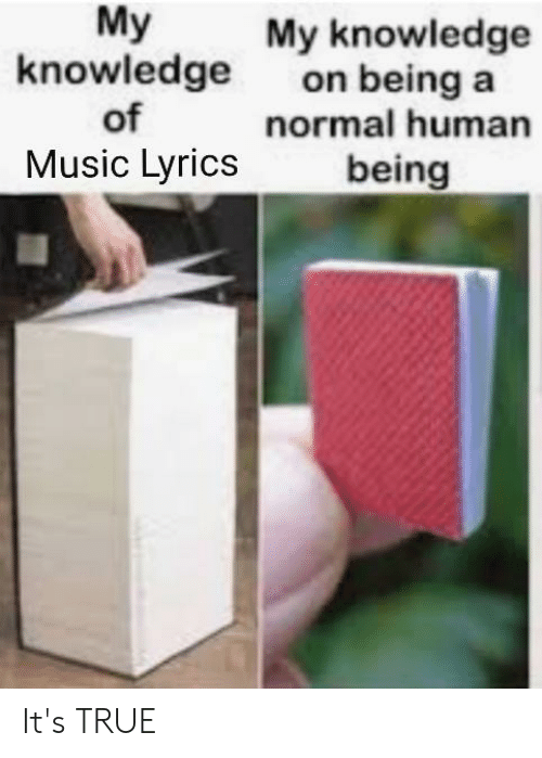music lyrics: My  knowledge  of  Music Lyrics  My knowledge  on being a  normal human  being It's TRUE