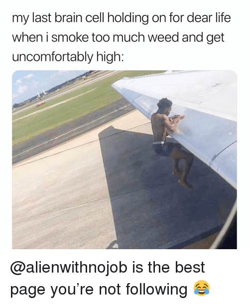 Uncomfortably: my last brain cell holding on for dear life  when i smoke too much weed and get  uncomfortably high: @alienwithnojob is the best page you're not following 😂