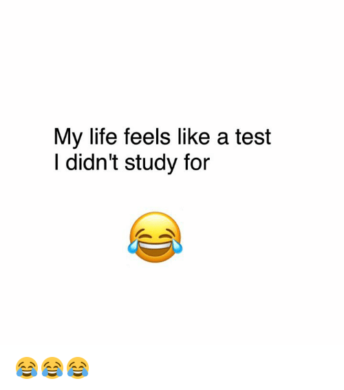 Dank, 🤖, and  My Life: My life feels like a test  I didn't study for 😂😂😂