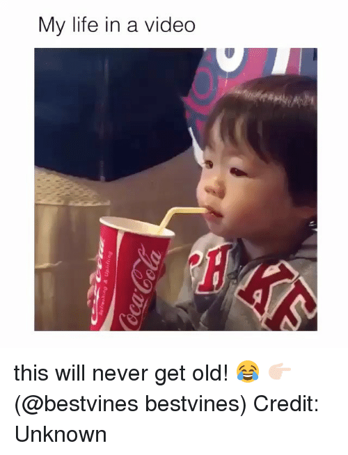 Life, Memes, and Video: My life in a video this will never get old! 😂 👉🏻(@bestvines bestvines) Credit: Unknown