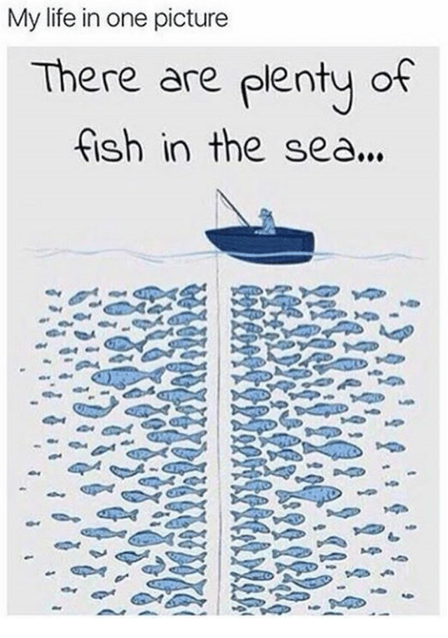 25 best memes about plenty of fish plenty of fish memes for Pleny of fish