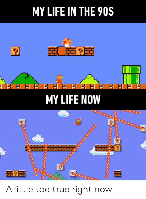 the 90s: MY LIFE IN THE 90S  MY LIFE NOW  38888 A little too true right now
