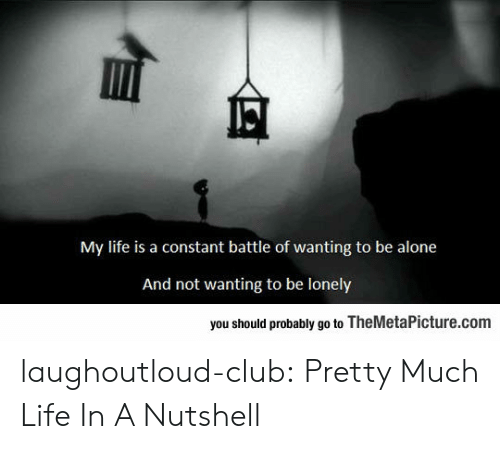 Battle Of: My life is a constant battle of wanting to be alone  And not wanting to be lonely  you should probably go to TheMetaPicture.com laughoutloud-club:  Pretty Much Life In A Nutshell