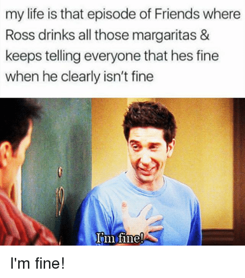 Girl Memes, Ross, and Fine: my life is that episode of Friends where  Ross drinks all those margaritas &  keeps telling everyone that hes fine  when he clearly isn't fine  I m fine! I'm fine!