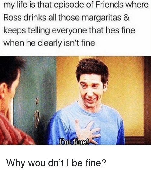 Friends, Life, and Memes: my life is that episode of Friends where  Ross drinks all those margaritas &  keeps telling everyone that hes fine  when he clearly isn't fine Why wouldn't I be fine?