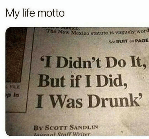 motto: My life motto  Now Mexico statute is vaguely word  See SUIT on PAGE  THe  T Didn't Do It,  면   But if I Did.  FILE  p in  I Was Drunk  By ScoTT SANDLIN  Writ