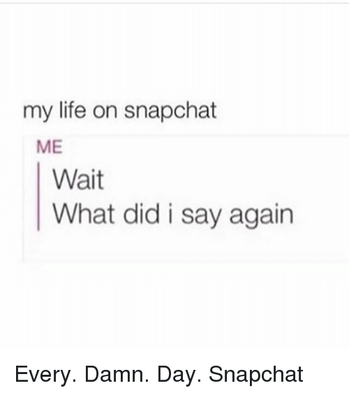 Life, Memes, and Snapchat: my life on snapchat  ME  Wait  What did i say again Every. Damn. Day. Snapchat