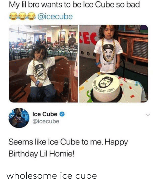 cube: My lil bro wants to be lce Cube so bad  @icecube  FLEC  BRTHD  JOSH  Ice Cube  @icecube  Seems like Ice Cube to me. Happy  Birthday Lil Homie! wholesome ice cube