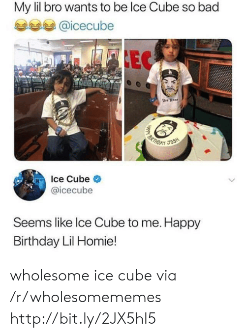 icecube: My lil bro wants to be lce Cube so bad  @icecube  EC  BRTH  JOSH  D  Ice Cube  @icecube  Seems like Ice Cube to me. Happy  Birthday Lil Homie!  HAppy B wholesome ice cube via /r/wholesomememes http://bit.ly/2JX5hI5