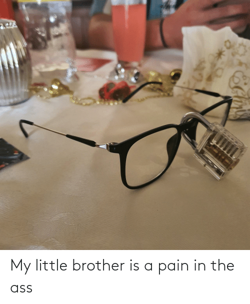 The Ass: My little brother is a pain in the ass
