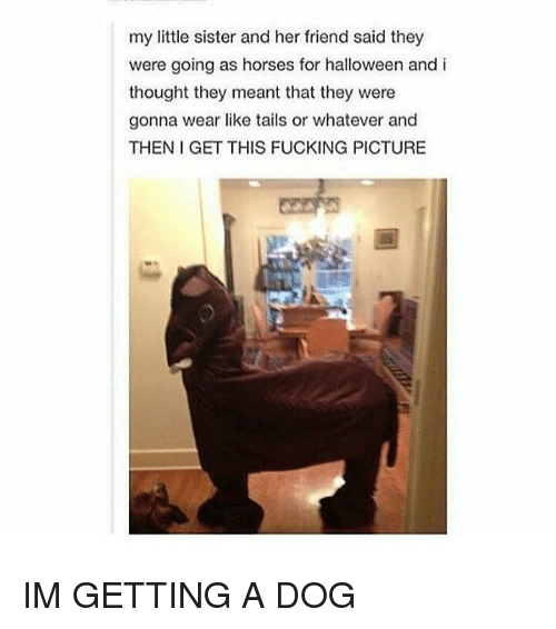 Halloween, Horses, and Thought: my little sister and her friend said they  were going as horses for halloween and i  thought they meant that they were  gonna wear like tails or whatever and  THEN I GET THIS FUCKING PICTURE IM GETTING A DOG