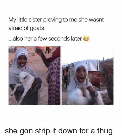 Thug, Girl Memes, and Her: My little sister proving to me she wasnt  afraid of goats  ...also her a few seconds later she gon strip it down for a thug