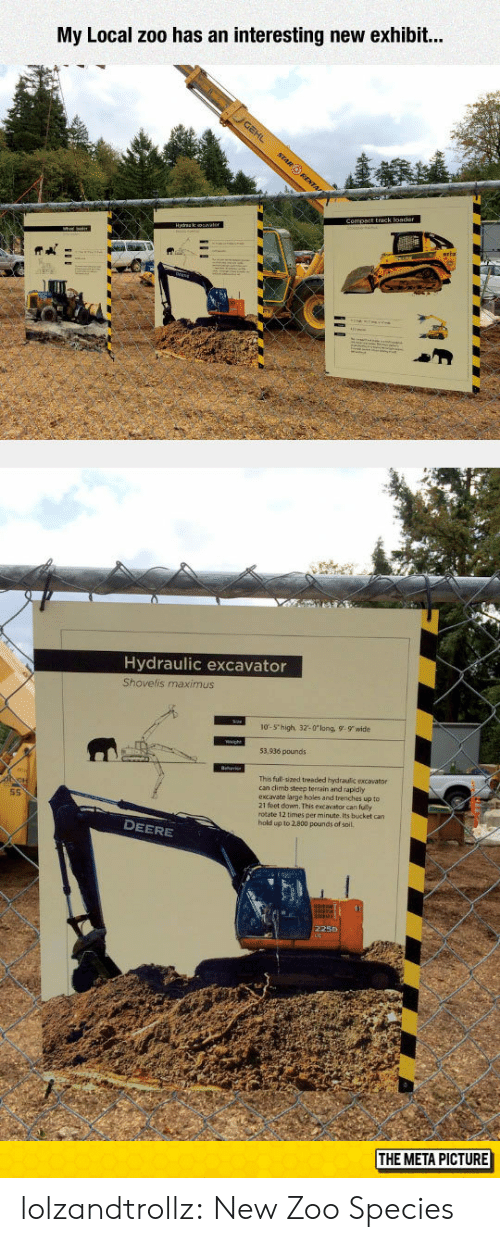 Exhibit: My Local zoo has an interesting new exhibit..  Hydraulic excavator  Shovelis maximus  10-5 high, 32-0long, 9-9 wide  53,936 pounds  This full-sized treaded hydraulic excavator  can dlimb steep terrain and rapidy  excavate large holes and trenches up to  21 feet down. This excavator can fully  rotate 12 times per minute. Its bucket can  hold up to 2.800 pounds of soil.  S5  DEERE  225D  THE META PICTURE lolzandtrollz:  New Zoo Species