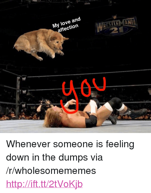 "Love, Http, and Down: My love and  affection  WRESTEMANI <p>Whenever someone is feeling down in the dumps via /r/wholesomememes <a href=""http://ift.tt/2tVoKjb"">http://ift.tt/2tVoKjb</a></p>"