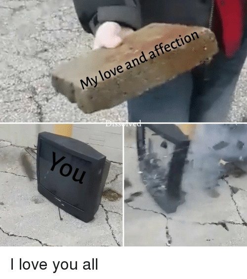 25+ Best Memes About I Love You