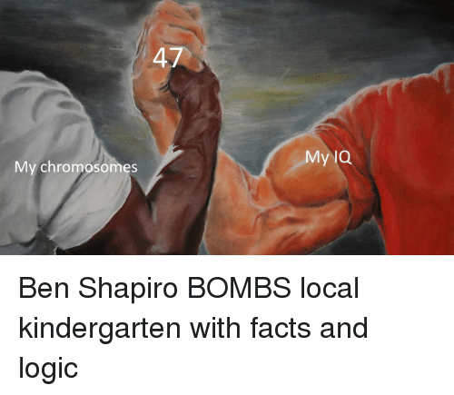 chromosomes: My lQ  My chromosomes Ben Shapiro BOMBS local kindergarten with facts and logic