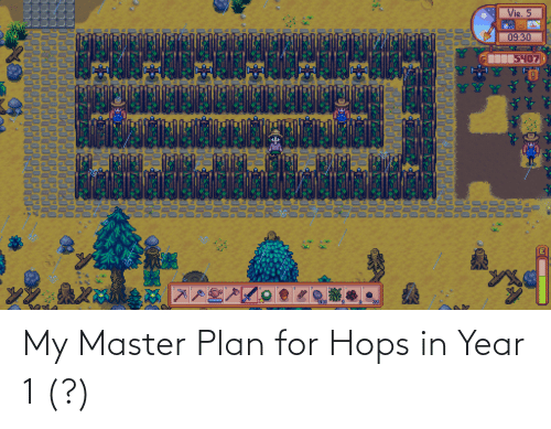 hops: My Master Plan for Hops in Year 1 (?)
