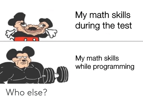Programming: My math skills  during the test  My math skills  while programming Who else?