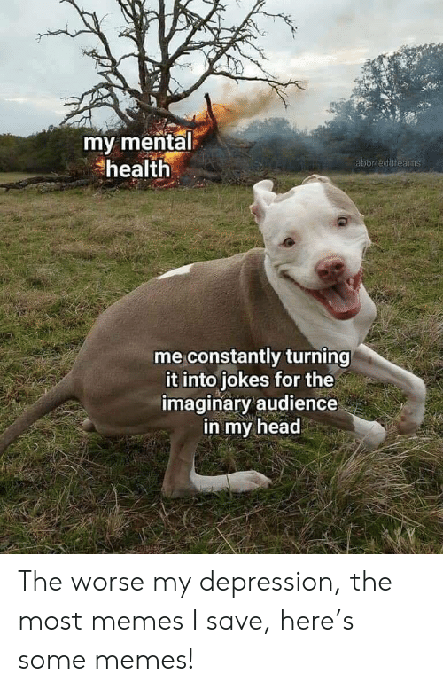 audience: my mental  health  aborteddreams  me constantly turning  it into jokes for the  imaginary audience  in my head The worse my depression, the most memes I save, here's some memes!