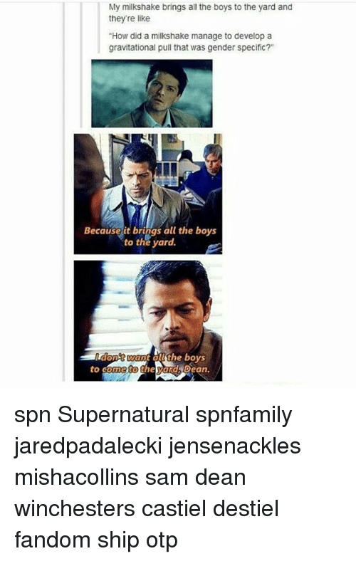 """Memes, 🤖, and Dean Winchester: My milkshake brings all the boys to the yard and  they're like  """"How did a milkshake manage to develop a  gravitational pull that was gender specific?""""  Because it brings all the boys  to the yard.  want 00 the boys  on  to come to  the ard Dean. spn Supernatural spnfamily jaredpadalecki jensenackles mishacollins sam dean winchesters castiel destiel fandom ship otp"""