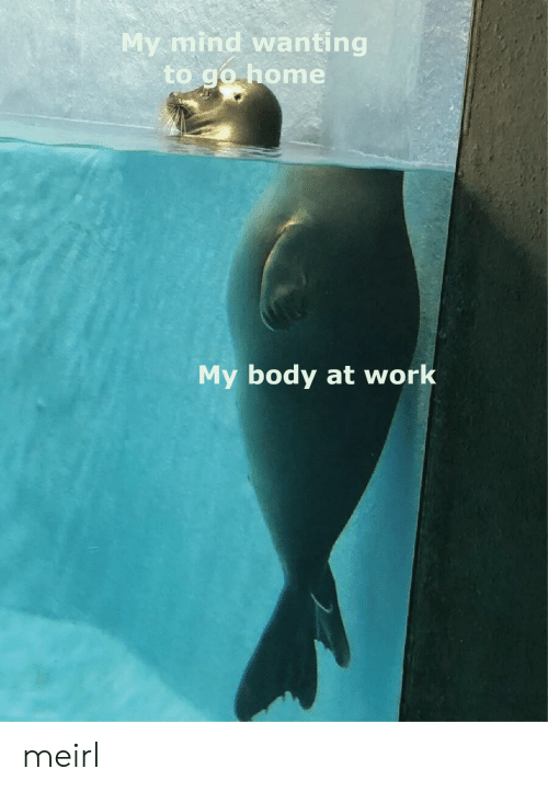 to-go-home: My mind wanting  to go home  My body at work meirl