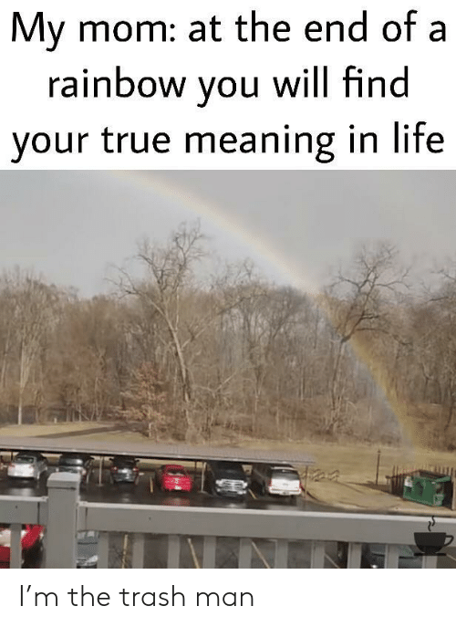 Rainbow: My mom: at the end of a  rainbow you will find  your true meaning in life I'm the trash man