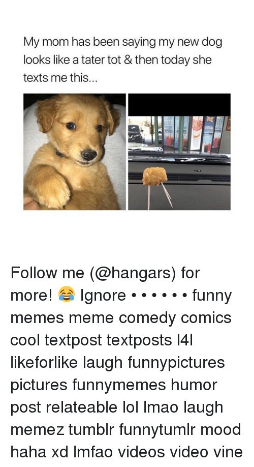 Funny, Lmao, and Lol: My mom has been saying my new dog  looks like a tater tot & then today she  texts me this... Follow me (@hangars) for more! 😂 Ignore • • • • • • funny memes meme comedy comics cool textpost textposts l4l likeforlike laugh funnypictures pictures funnymemes humor post relateable lol lmao laugh memez tumblr funnytumlr mood haha xd lmfao videos video vine
