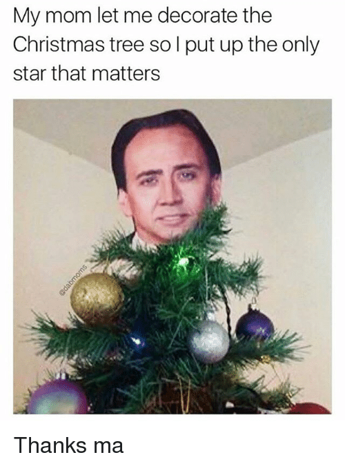Christmas, Memes, and Christmas Tree: My mom let me decorate the  Christmas tree so l put up the only  star that matters Thanks ma