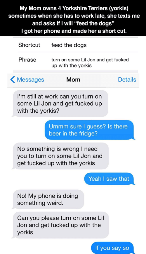 """Lil Jon: My Mom owns 4 Yorkshire Terriers (yorkis)  sometimes when she has to work late, she texts me  and asks if I will """"feed the dogs""""  I got her phone and made her a short cut.  feed the dogs  Shortcut  Phrase  turn on some Lil Jon and get fucked  up with the yorkis  Messages  Mom  Details  I'm still at work can you turn on  some Lil Jon and get fucked up  with the yorkis?  Ummm sure I guess? Is there  beer in the fridge?  No something is wrong I need  you to turn on some Lil Jon and  get fucked up with the yorkis  Yeah I saw that  No! My phone is doing  something weird.  Can you please turn on some Lil  Jon and get fucked up with the  yorkis  If you say so"""
