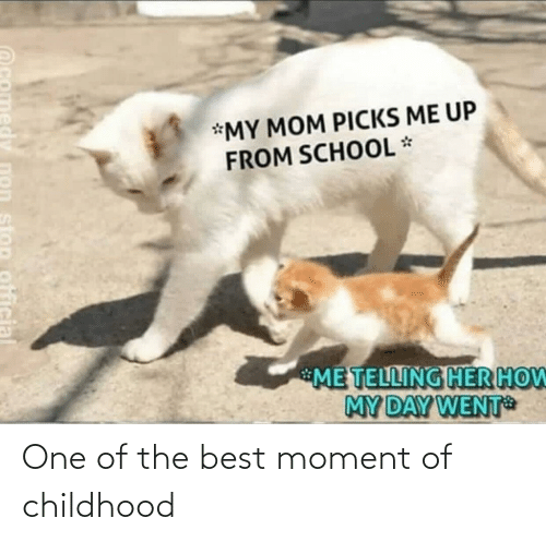 one of the best: *MY MOM PICKS ME UP  FROM SCHOOL *  ME TELLING HER HOW  MY DAY WENT  stop official One of the best moment of childhood