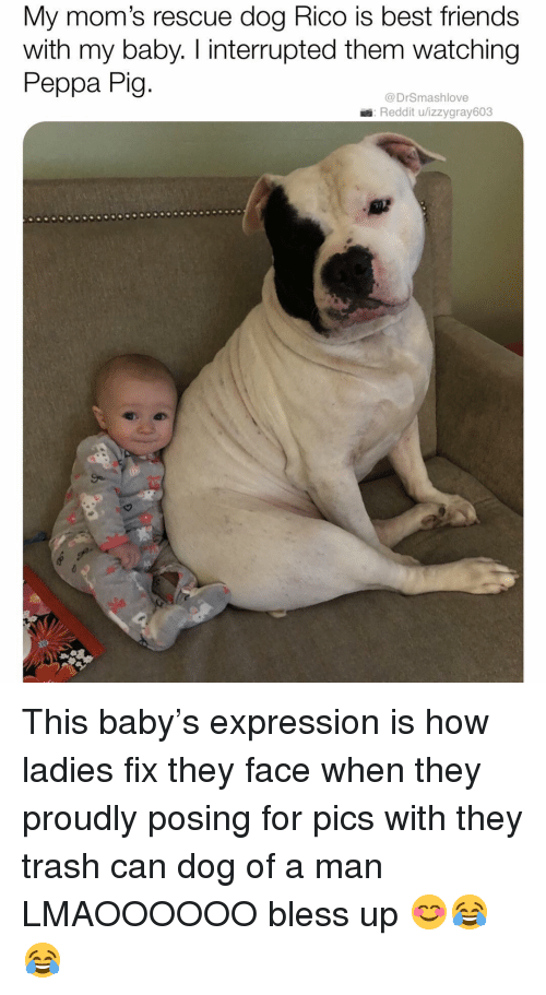 rescue dog: My mom's rescue dog Rico is best friends  with my baby. I interrupted them watching  Peppa Pig  @DrSmashlove  Reddit u/izzygray603 This baby's expression is how ladies fix they face when they proudly posing for pics with they trash can dog of a man LMAOOOOOO bless up 😊😂😂