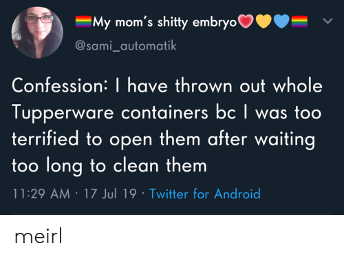 confession: My mom's shitty embryo  @sami_automatik  Confession: | have thrown out whole  Tupperware containers bc I was too  terrified to open them after waiting  too long to clean them  11:29 AM 17 Jul 19 Twitter for Android meirl