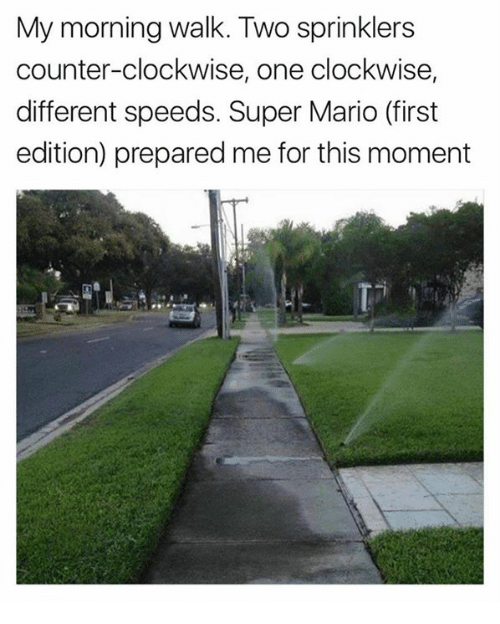 Dank, Super Mario, and Mario: My morning walk. Two sprinklers  counter-clockwise, one clockwise,  different speeds. Super Mario (first  edition) prepared me for this moment