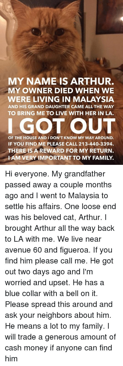 My Name Is Arthur My Owner Died When We Were Living In