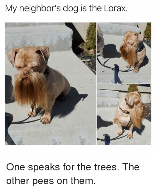 Funny, Neighbors, and Trees: My neighbor's dog is the Lorax. One speaks for the trees. The other pees on them.
