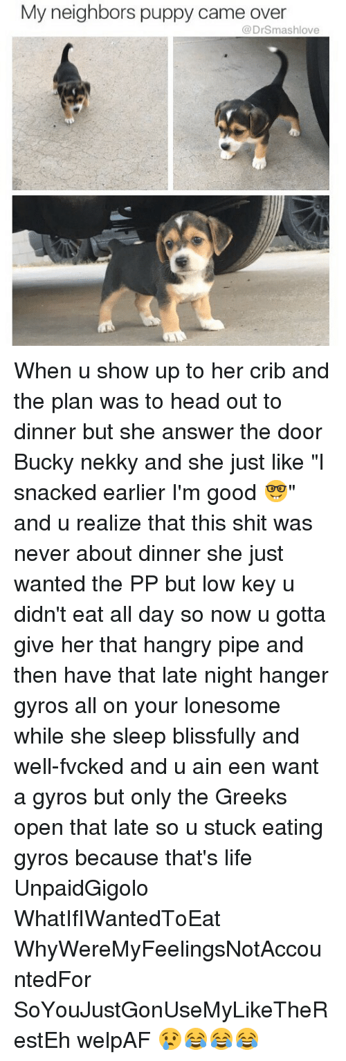 """Cribbing: My neighbors puppy came over  @DrSmashlove When u show up to her crib and the plan was to head out to dinner but she answer the door Bucky nekky and she just like """"I snacked earlier I'm good 🤓"""" and u realize that this shit was never about dinner she just wanted the PP but low key u didn't eat all day so now u gotta give her that hangry pipe and then have that late night hanger gyros all on your lonesome while she sleep blissfully and well-fvcked and u ain een want a gyros but only the Greeks open that late so u stuck eating gyros because that's life UnpaidGigolo WhatIfIWantedToEat WhyWereMyFeelingsNotAccountedFor SoYouJustGonUseMyLikeTheRestEh welpAF 😢😂😂😂"""
