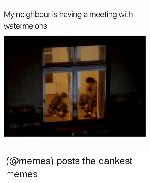Watermelon Meme: My neighbour is havinga meeting with  watermelons (@memes) posts the dankest memes