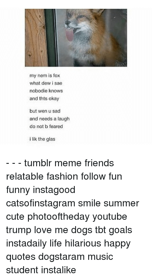 Memes, Music, and 🤖: my nem is fox  what dew i sae  nobodie knows  and thts okay  but wen u sad  and needs a laugh  do not b feared  i lik the glas - - - tumblr meme friends relatable fashion follow fun funny instagood catsofinstagram smile summer cute photooftheday youtube trump love me dogs tbt goals instadaily life hilarious happy quotes dogstaram music student instalike