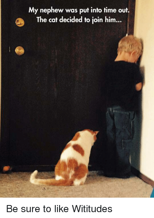 dank: My nephew was put into time out.  The cat decided to join him... Be sure to like Wititudes